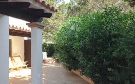 Apartament de lloguer Blaumar Formentera - terrassa